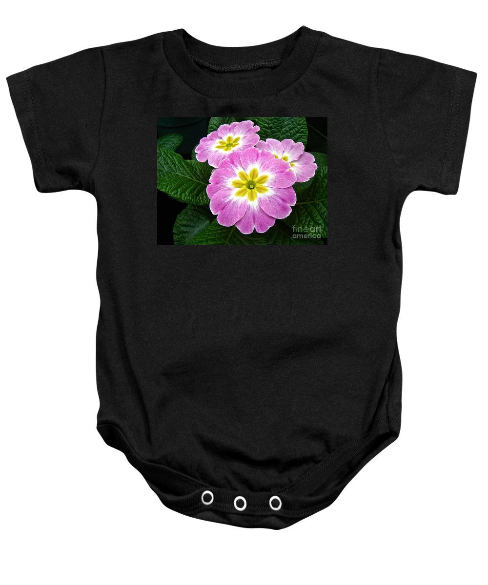 Primrose Baby Onesie featuring the photograph Down On Primrose Lane by Mother Nature