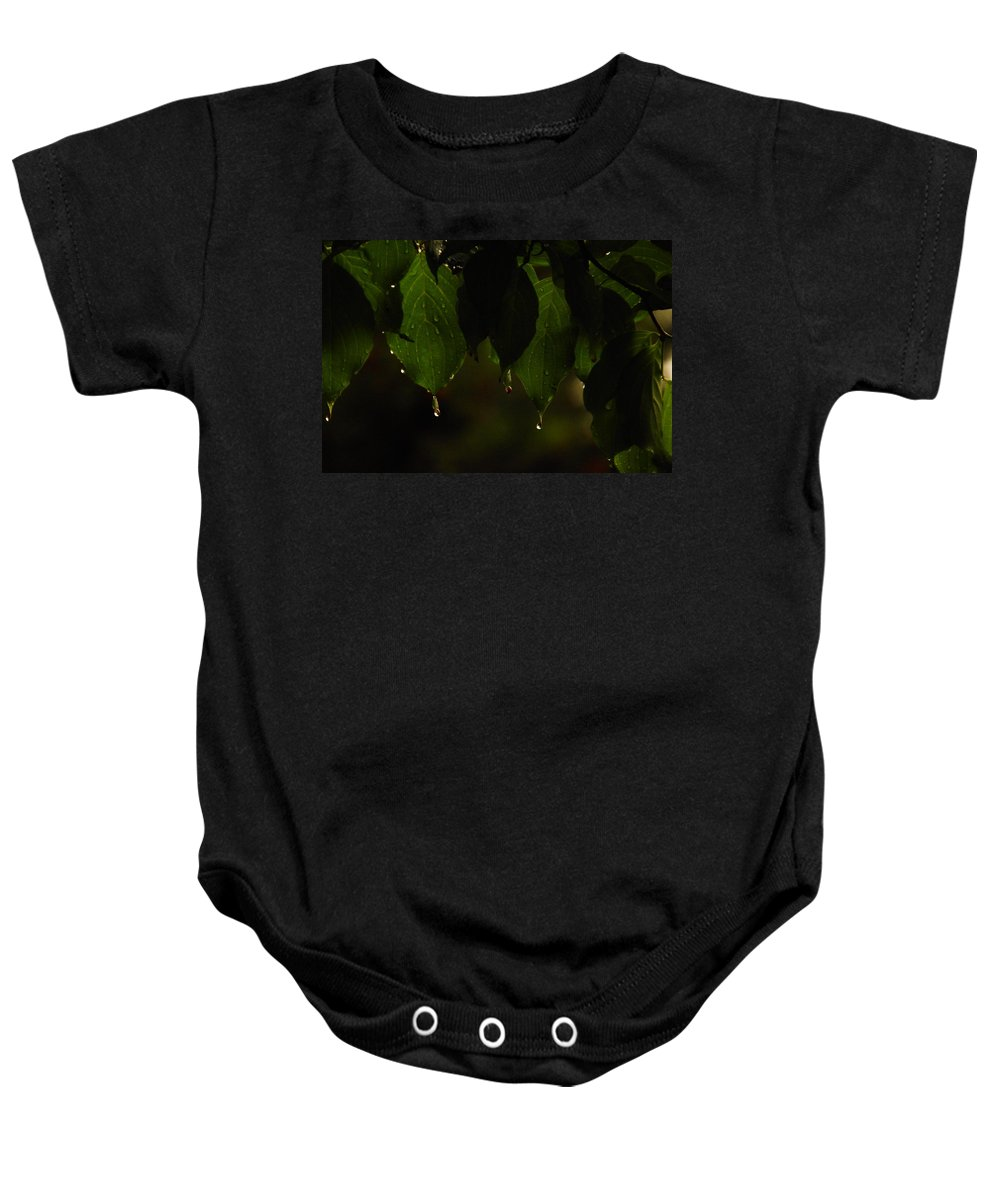 Leaves Baby Onesie featuring the photograph Dripping From The Green by Jeff Swan
