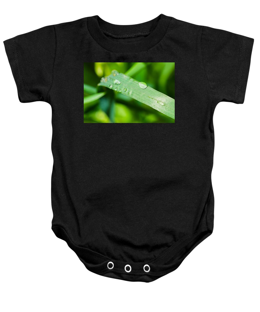 Agriculture Baby Onesie featuring the photograph Drop Of Rainwater On A Grass Blade by Alexander Senin
