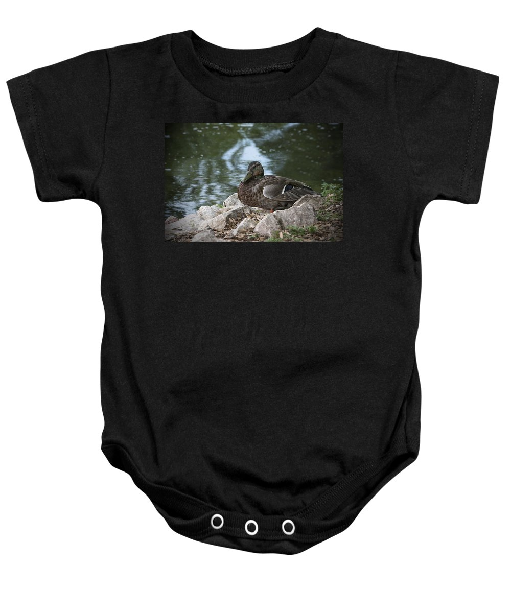 Duck Baby Onesie featuring the photograph Duck by Jayne Gohr