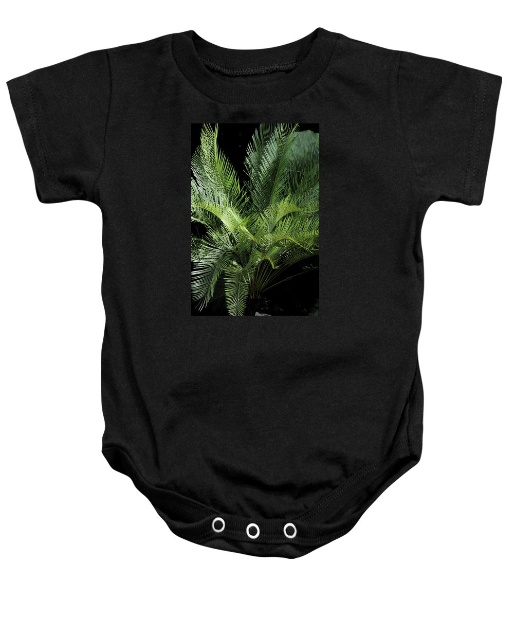 Palm Baby Onesie featuring the photograph Elegantly Curved by Christiane Schulze Art And Photography
