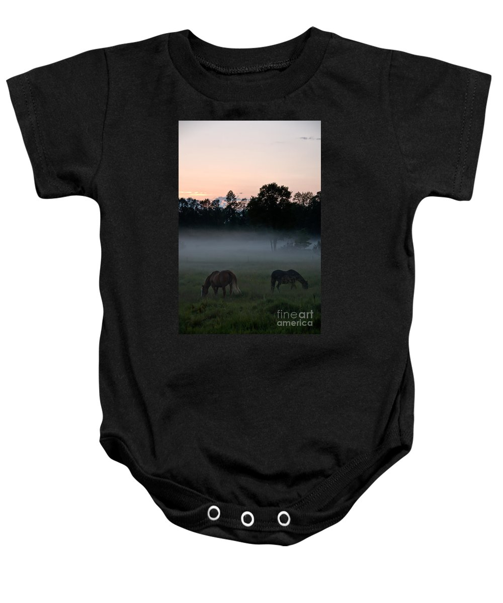 Landscape Baby Onesie featuring the photograph Evening Mist by Cheryl Baxter
