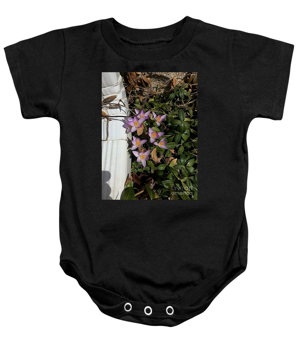 Crocus Baby Onesie featuring the photograph Every Spring by Joseph Yarbrough