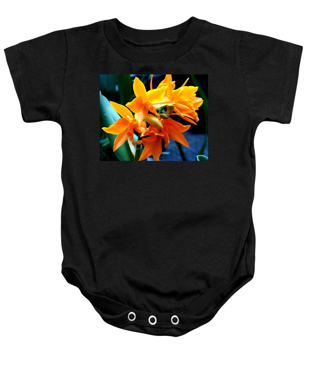 Flowers Baby Onesie featuring the photograph Exotic Orange by Karen Wiles
