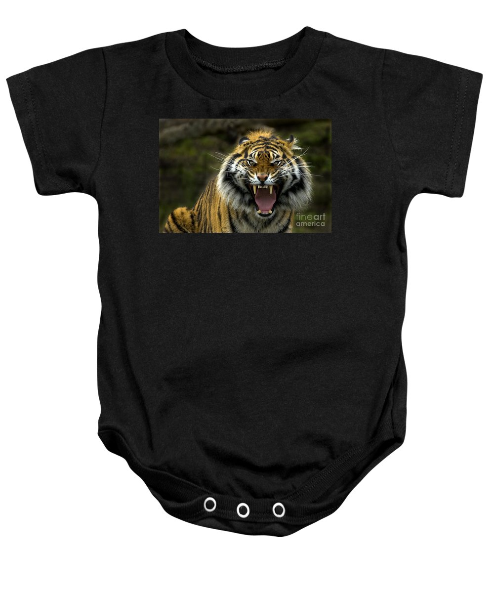 Tiger Baby Onesie featuring the photograph Eyes Of The Tiger by Mike Dawson