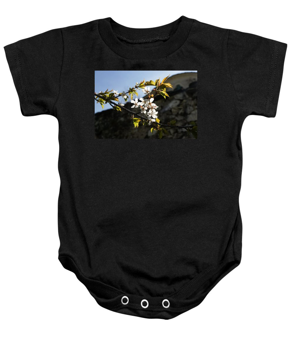 Facades Baby Onesie featuring the photograph Facades And Fruit Trees - The Church And The Plum by Georgia Mizuleva