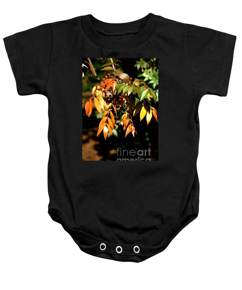 Fall Color Baby Onesie featuring the photograph Fall Leaves by Kathy McClure