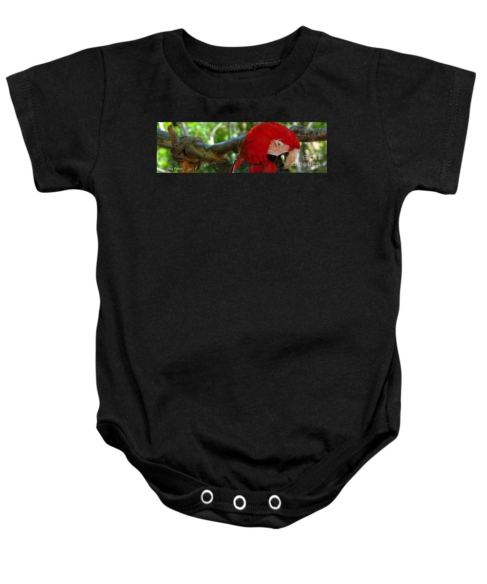 Patzer Baby Onesie featuring the photograph Feeling A Little Red by Greg Patzer