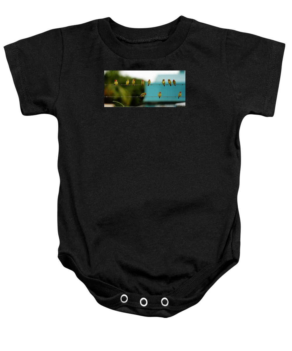 Birds Baby Onesie featuring the photograph Fence Sitting by Penney Hayley