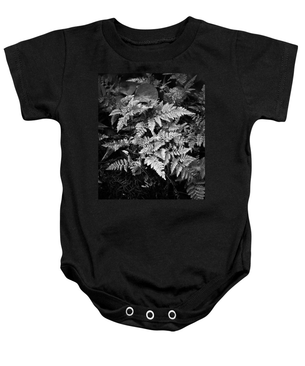 Fern Baby Onesie featuring the photograph Fern 8664 by Timothy Bischoff
