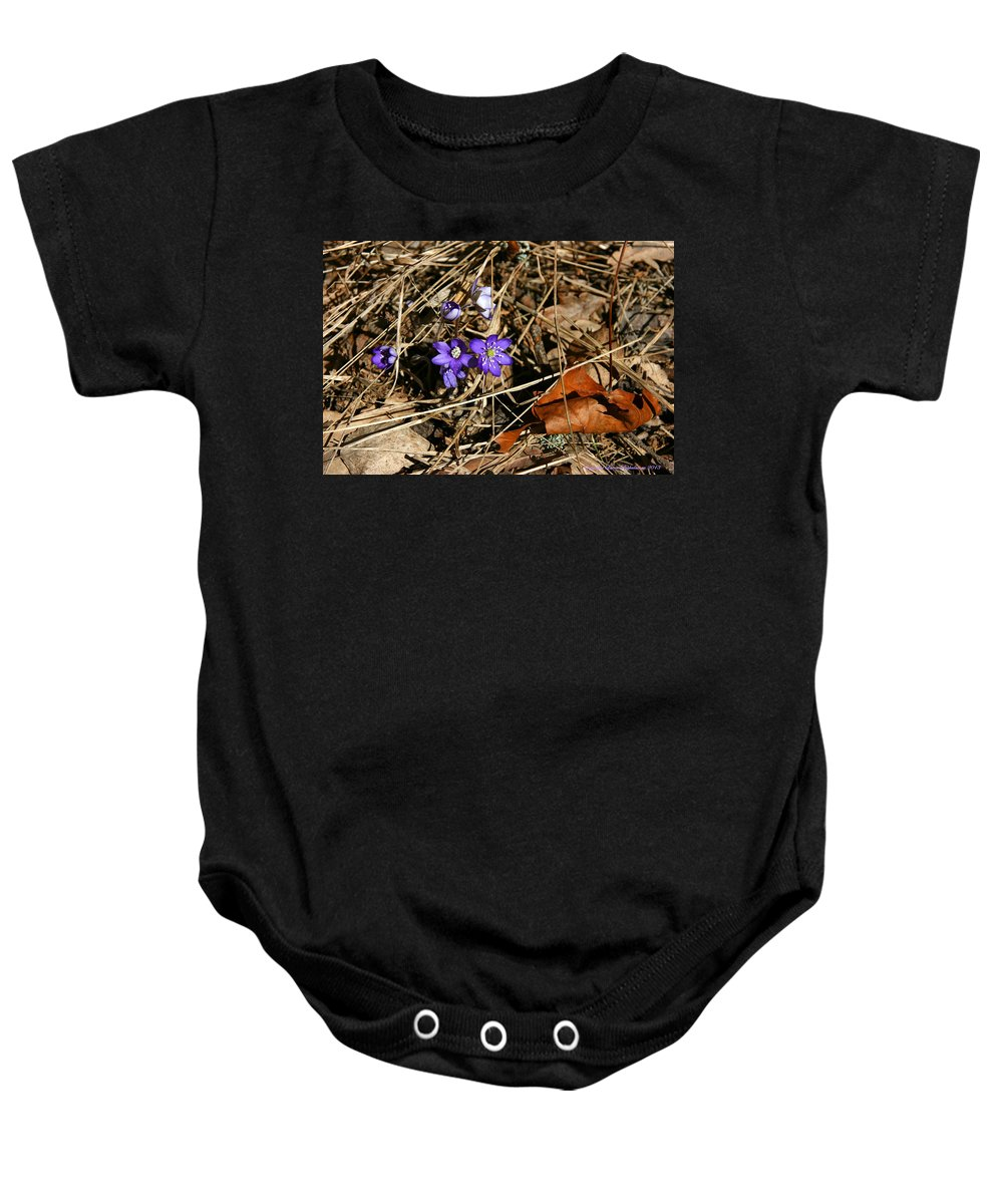 Hepatica Nobilis Baby Onesie featuring the photograph First Spring Flowers by Leena Pekkalainen