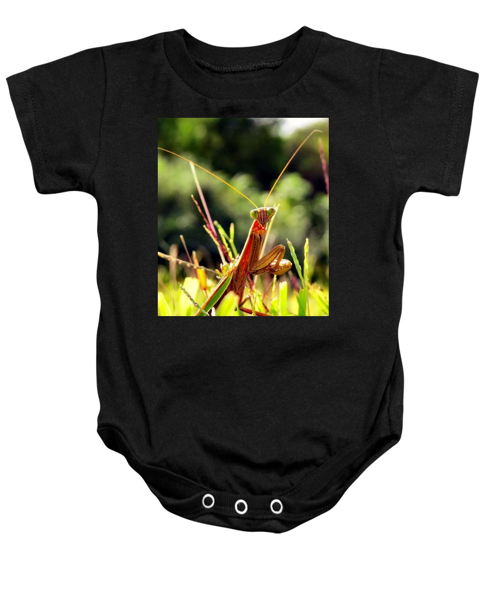 Praying Baby Onesie featuring the photograph Flirty Mantis by Art Dingo
