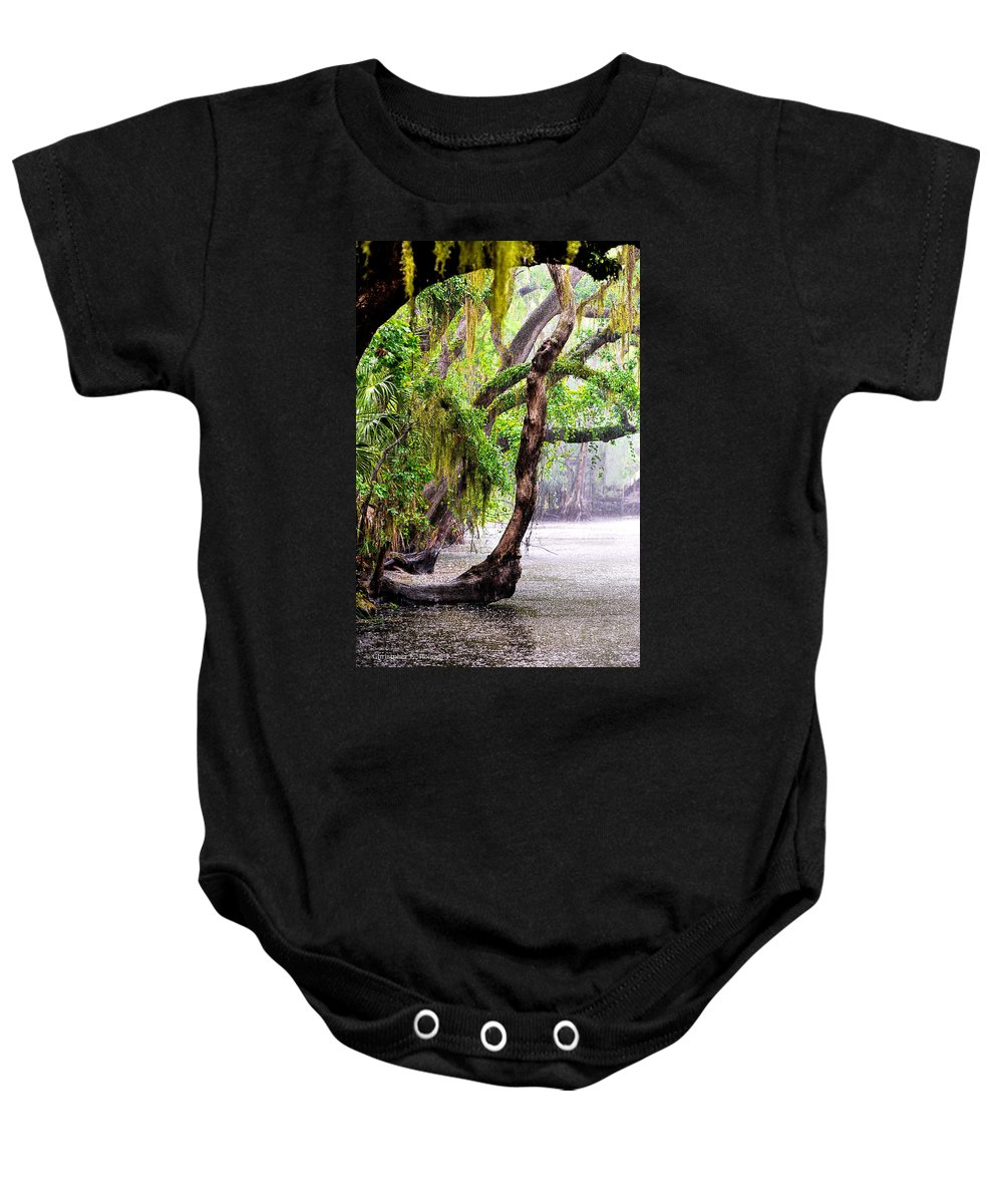 Christopher Holmes Photography Baby Onesie featuring the photograph Florida Naturally 3 by Christopher Holmes