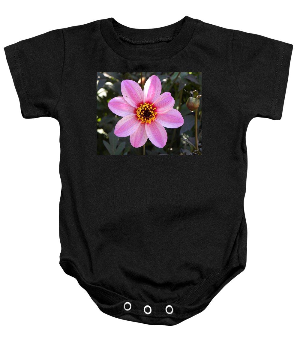 Flower Baby Onesie featuring the photograph Flower by Brigitte Mueller