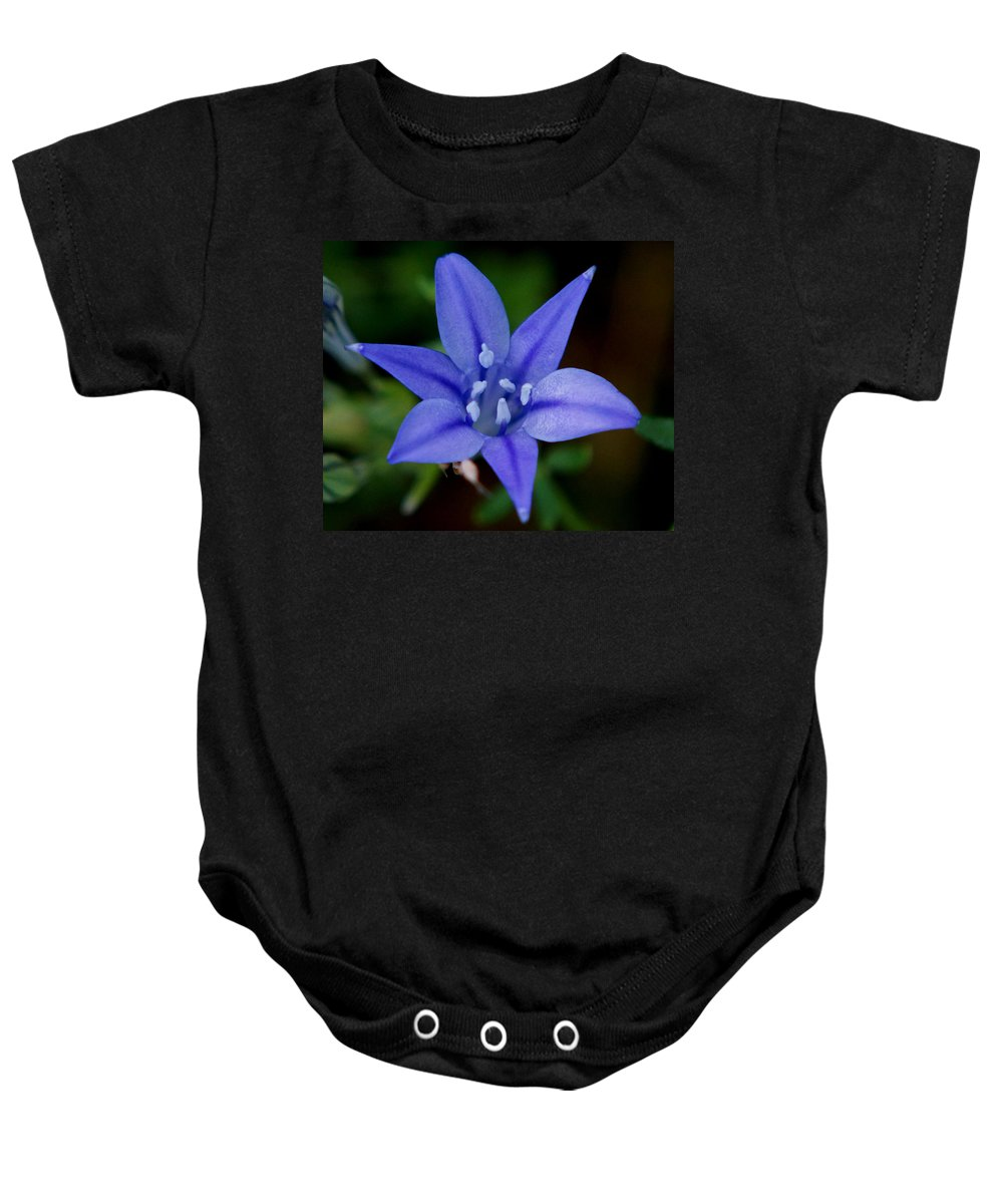 Triteleia Laxa Baby Onesie featuring the photograph Flower From Paradise Lost by Kim Pate