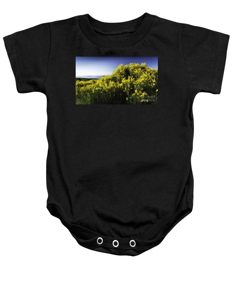 Croatia Baby Onesie featuring the photograph Flowering Bush by Timothy Hacker