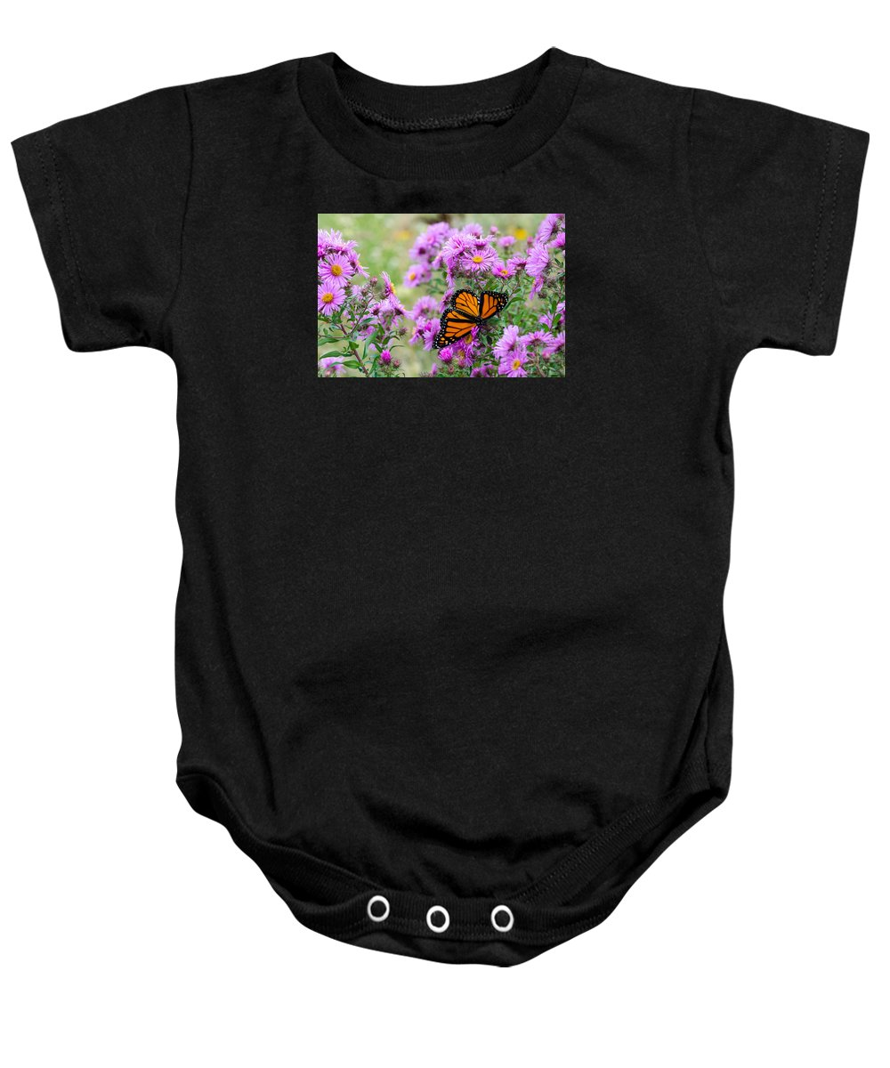Monarch Baby Onesie featuring the photograph Flowers And Butterfly by Susan McMenamin