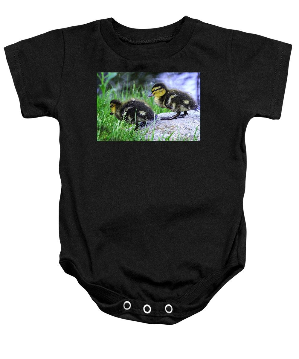 Usa Baby Onesie featuring the photograph Follow The Leader Ducky Style by LeeAnn McLaneGoetz McLaneGoetzStudioLLCcom