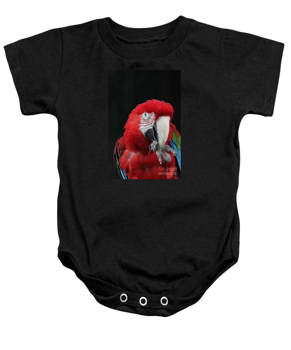 Green-winged Macaw Baby Onesie featuring the photograph Foot Hold by Judy Whitton
