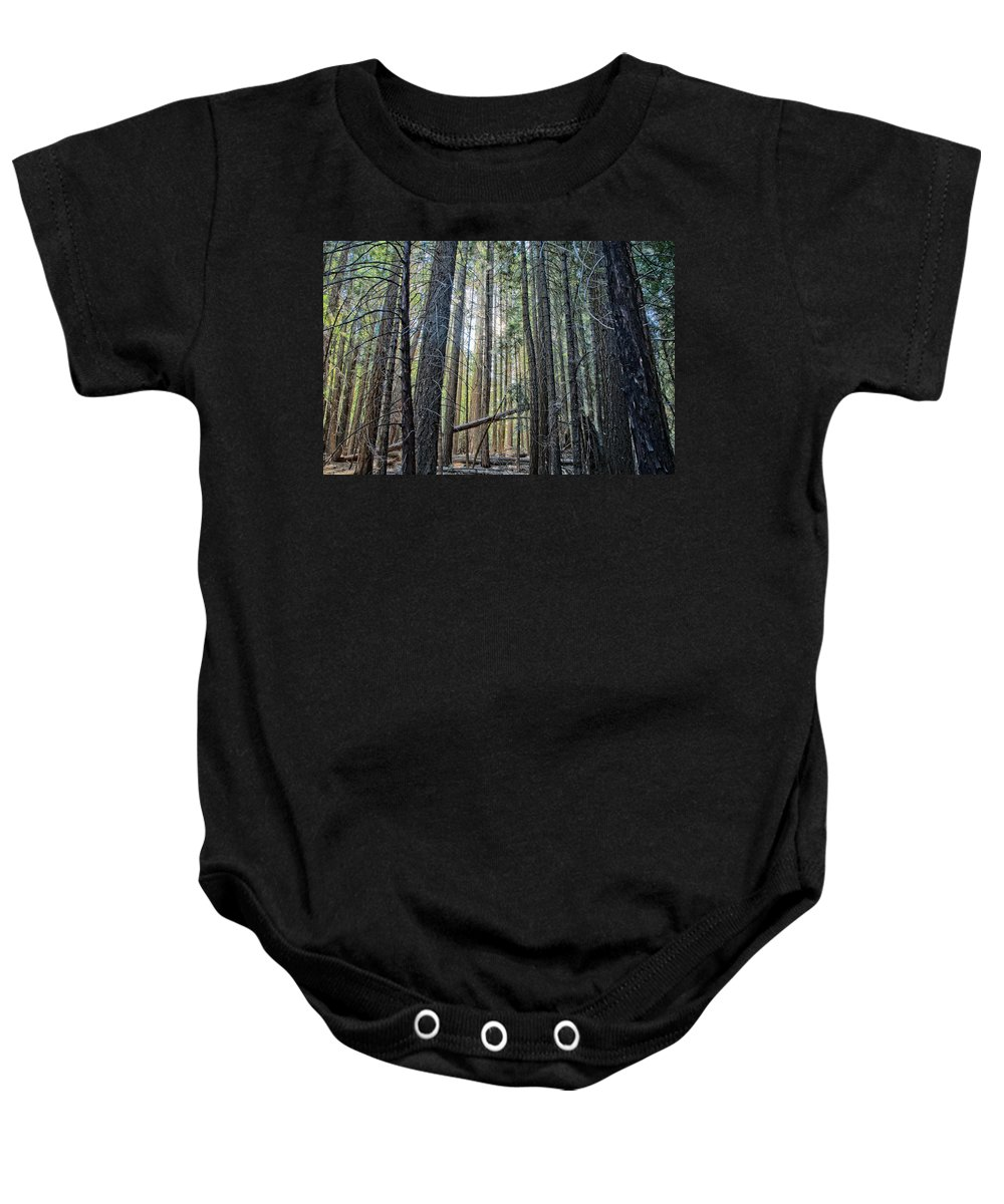 John Muir Trail Baby Onesie featuring the photograph Forest Morning by Shauna Milton