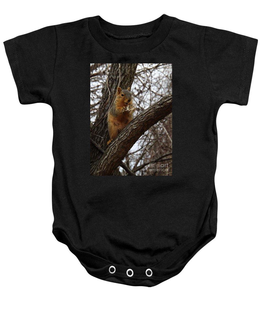 Fox Baby Onesie featuring the photograph Fox Squirrel 1 by Sara Raber