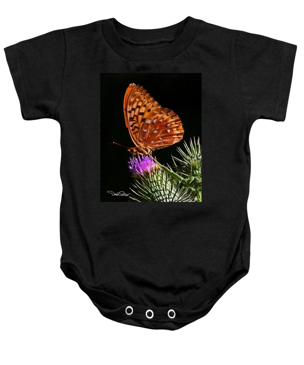 Nature Baby Onesie featuring the photograph Fritillary On Thistle by David Salter