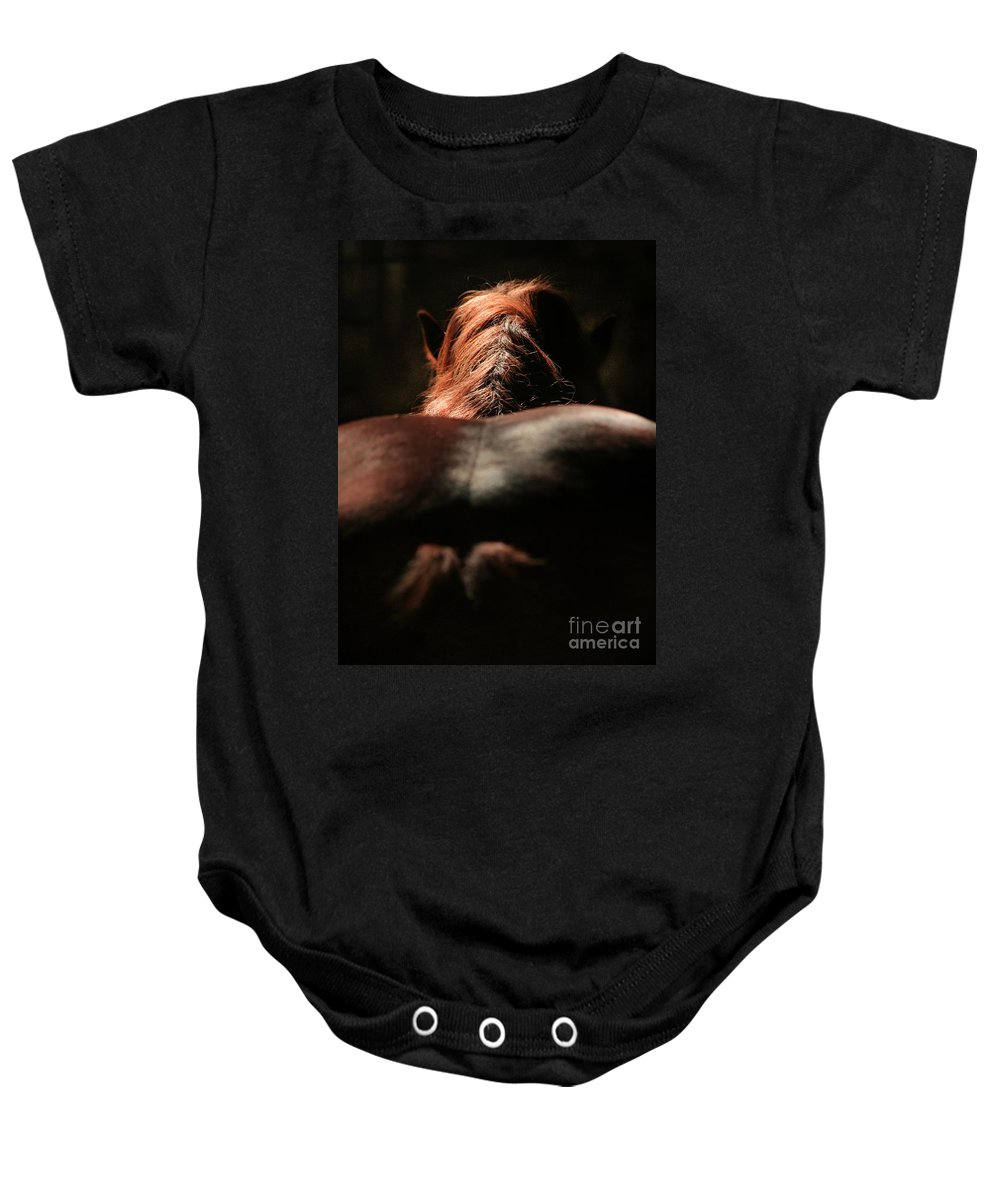 Horse Baby Onesie featuring the photograph From The Back by Angel Ciesniarska