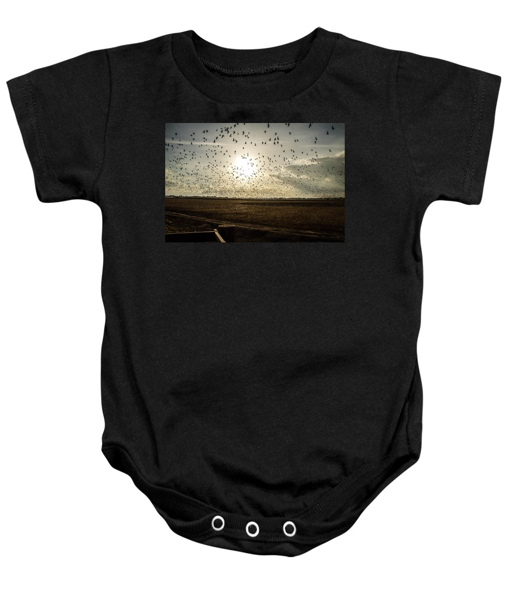 Geese Baby Onesie featuring the photograph Geese At Sunset by Brian Williamson