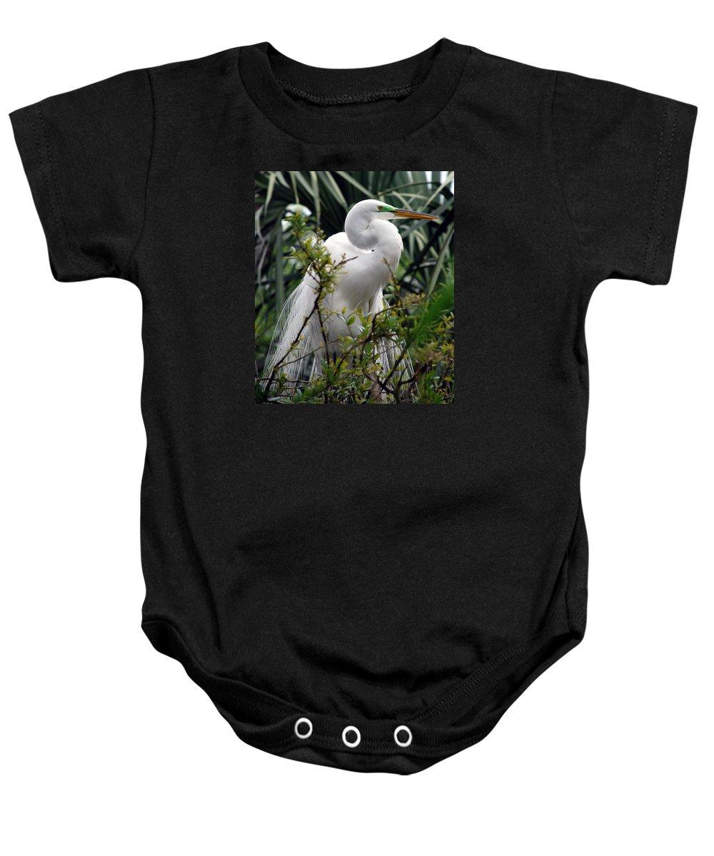 Great Egret Baby Onesie featuring the photograph Gentleman by Skip Willits