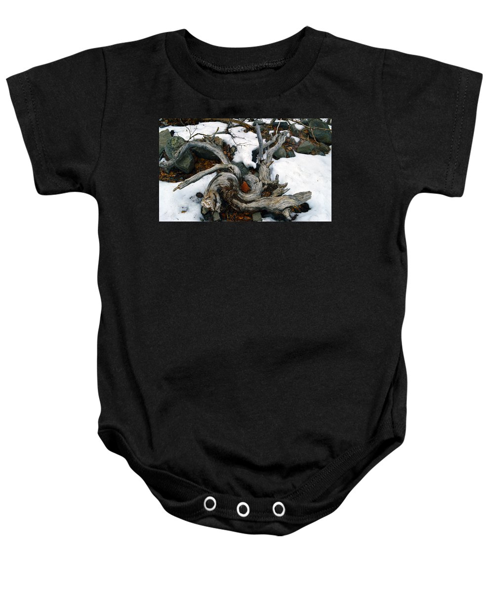 Nevada Baby Onesie featuring the photograph Gnarled Cone by Brent Dolliver