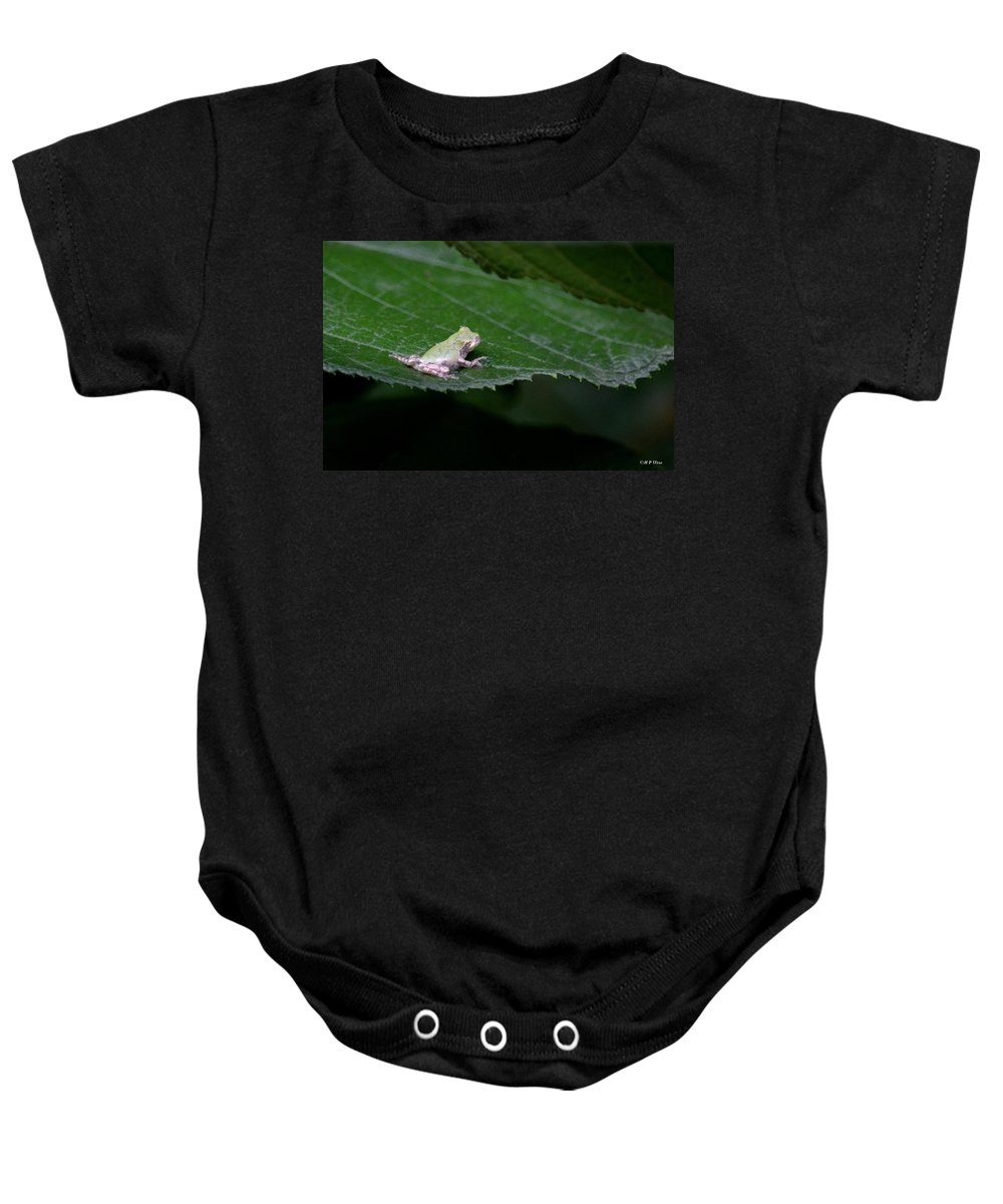God's Tiny Tree Frog Baby Onesie featuring the photograph God's Tiny Tree Frog by Maria Urso