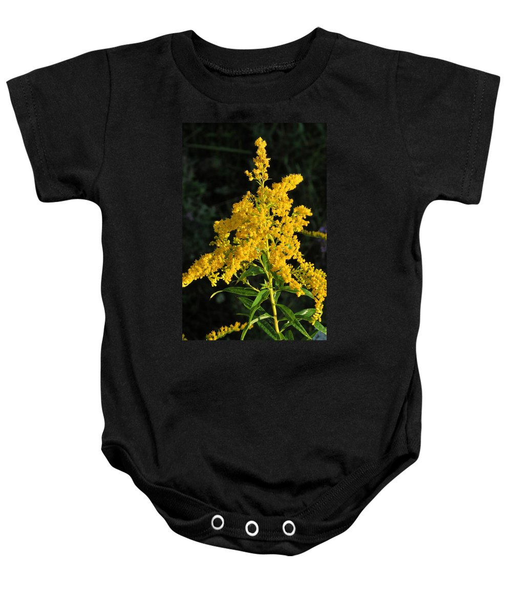 Goldenrod Baby Onesie featuring the photograph Goldenrod by Valerie Kirkwood