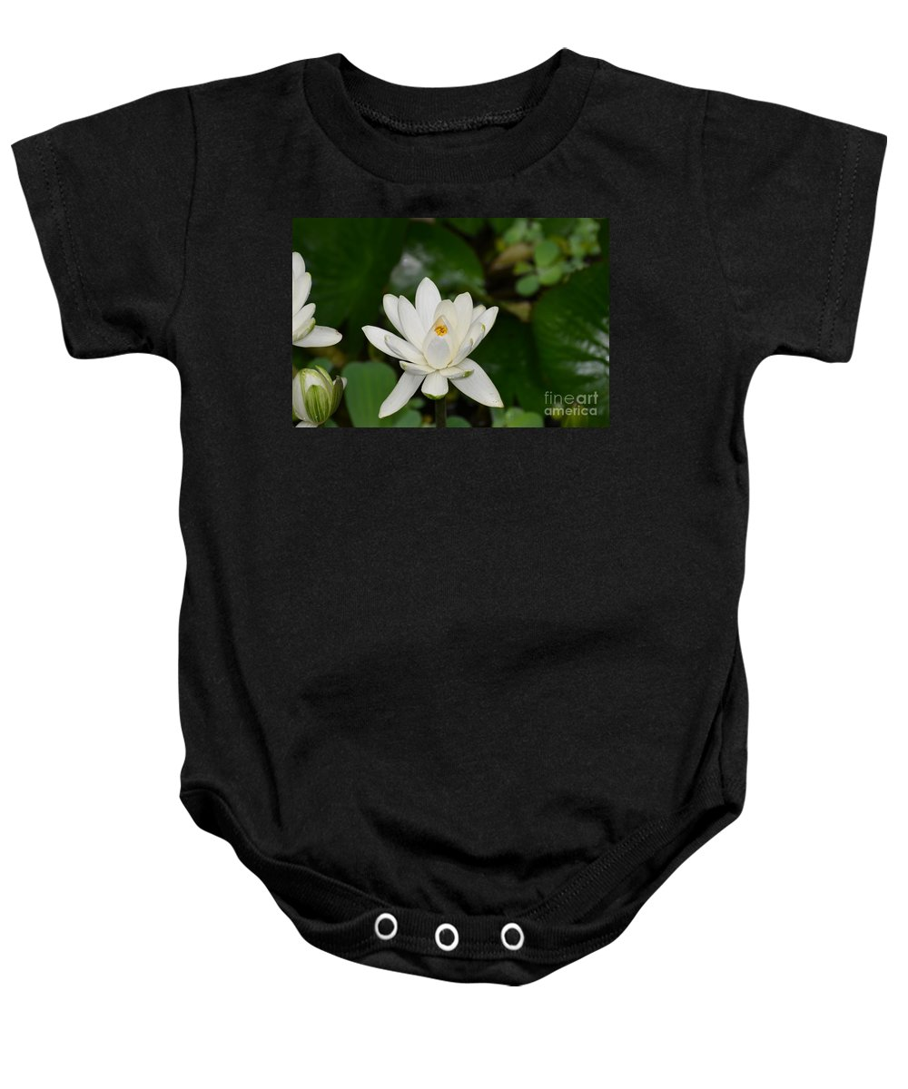 Lotus Baby Onesie featuring the photograph Gorgeous White Lotus Flower Blossom by DejaVu Designs
