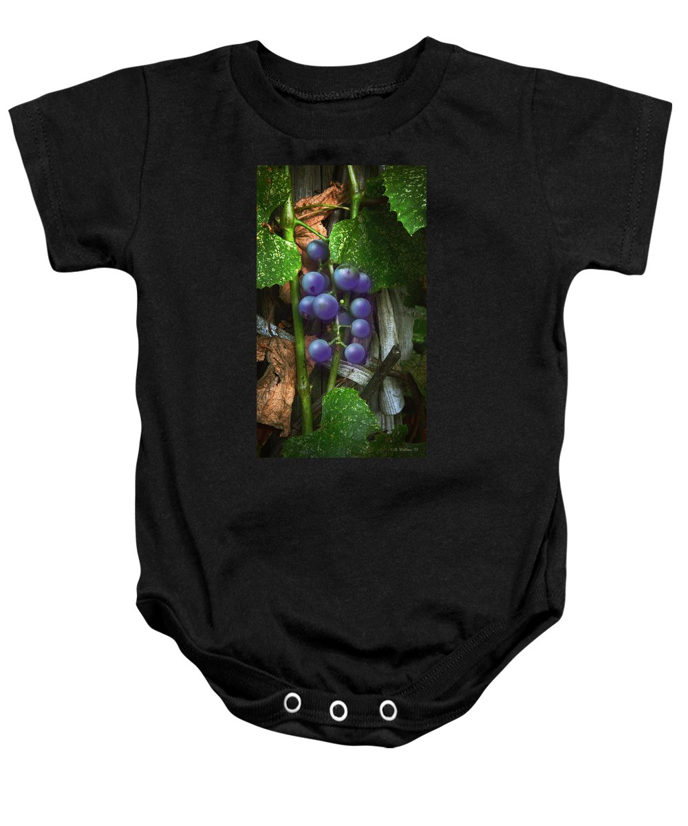 2d Baby Onesie featuring the photograph Grapes On The Vine by Brian Wallace