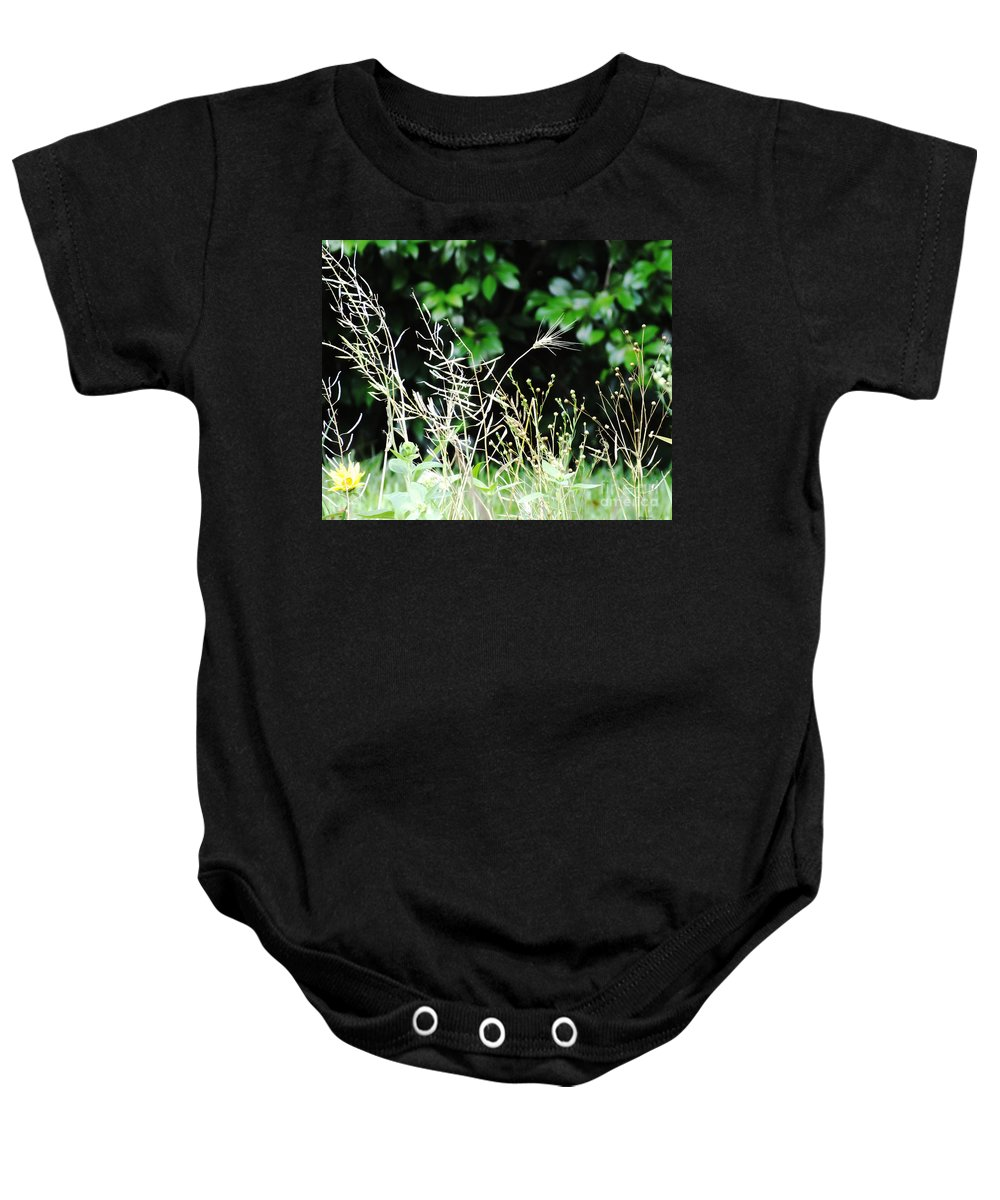 Grasses Baby Onesie featuring the photograph Grasses by Lizi Beard-Ward