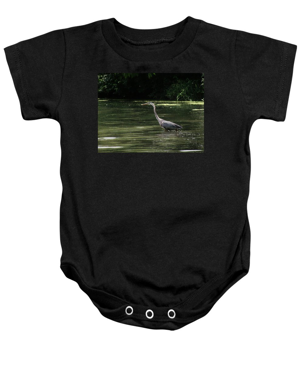Great Blue Heron (ardea Herodias) Baby Onesie featuring the photograph Great Blue Heron by Eric Noa