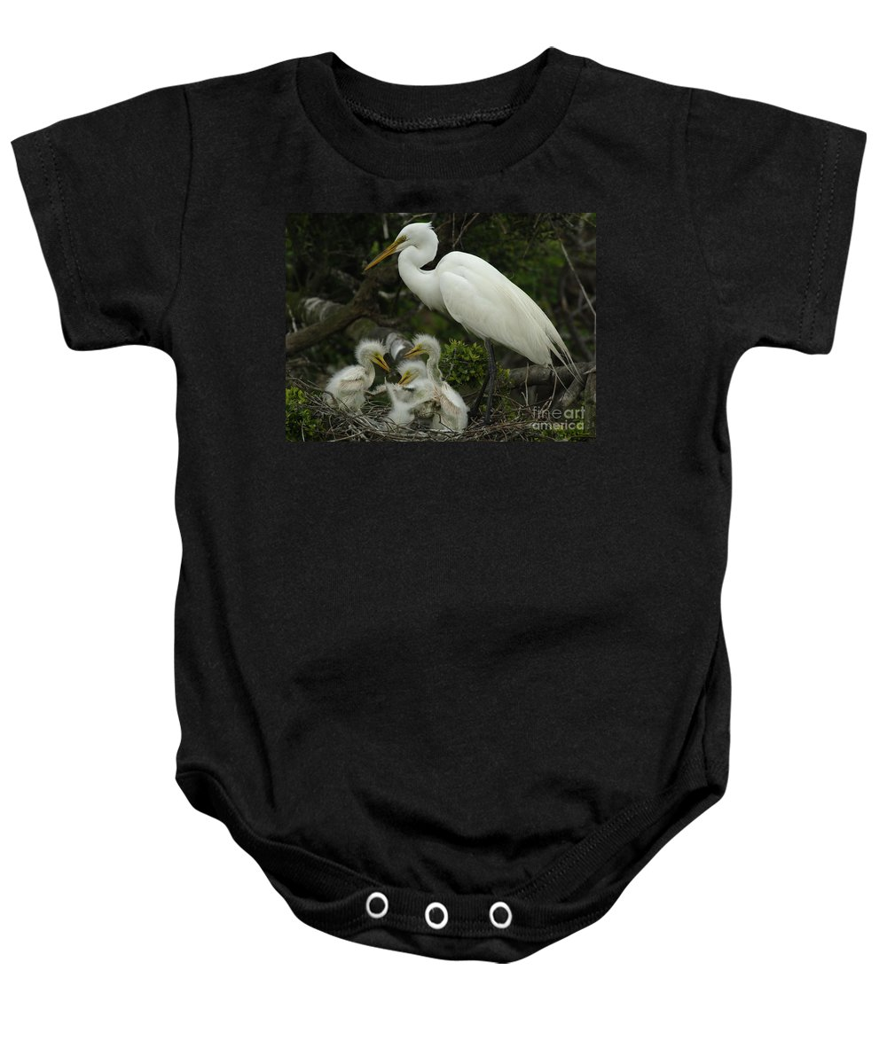 Great Egret Family Baby Onesie featuring the photograph Great Egret With Young by Bob Christopher