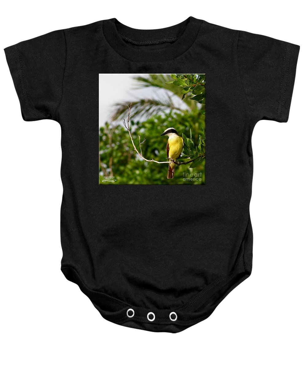 Great Baby Onesie featuring the photograph Great Kiskadee by Rebecca Morgan