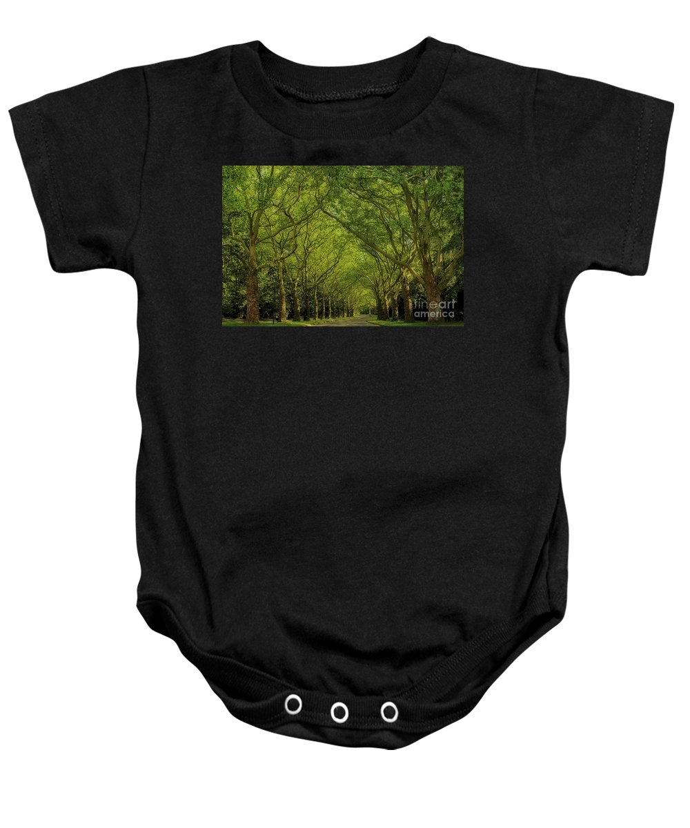 Trees Baby Onesie featuring the photograph Green Green World by Teresa Zieba