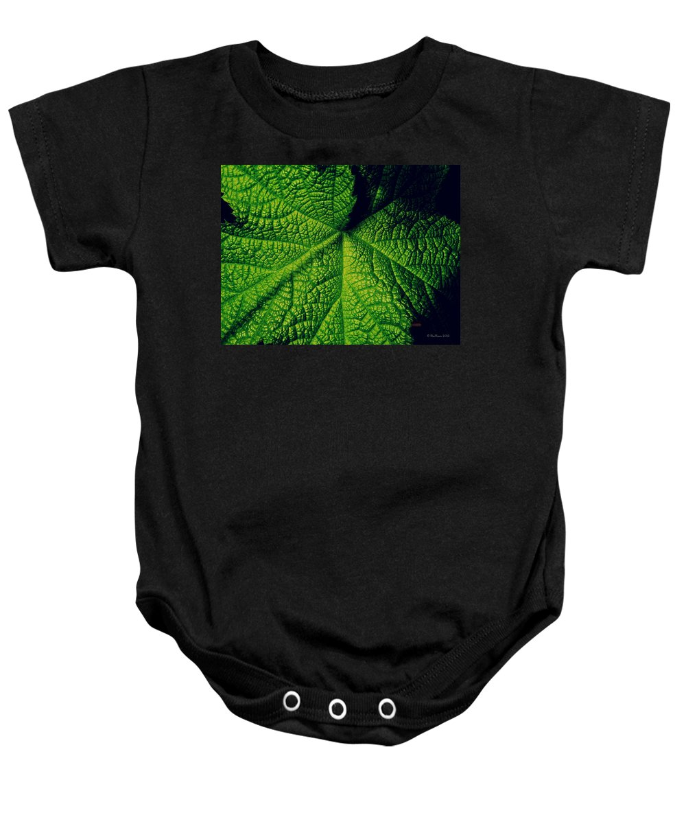 Leaf Baby Onesie featuring the photograph Green Ribbons Of Life by Roe Rader