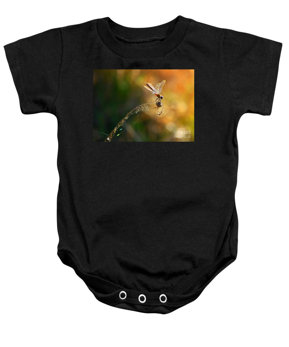 Nature Baby Onesie featuring the photograph Hang On by Carol Groenen