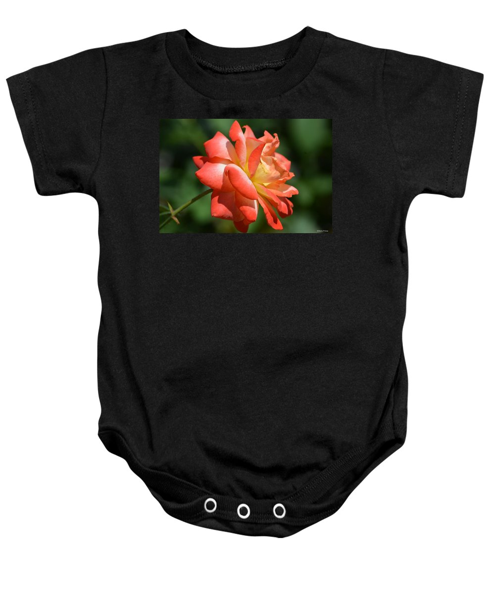 Harvest Rose Baby Onesie featuring the photograph Harvest Rose by Maria Urso