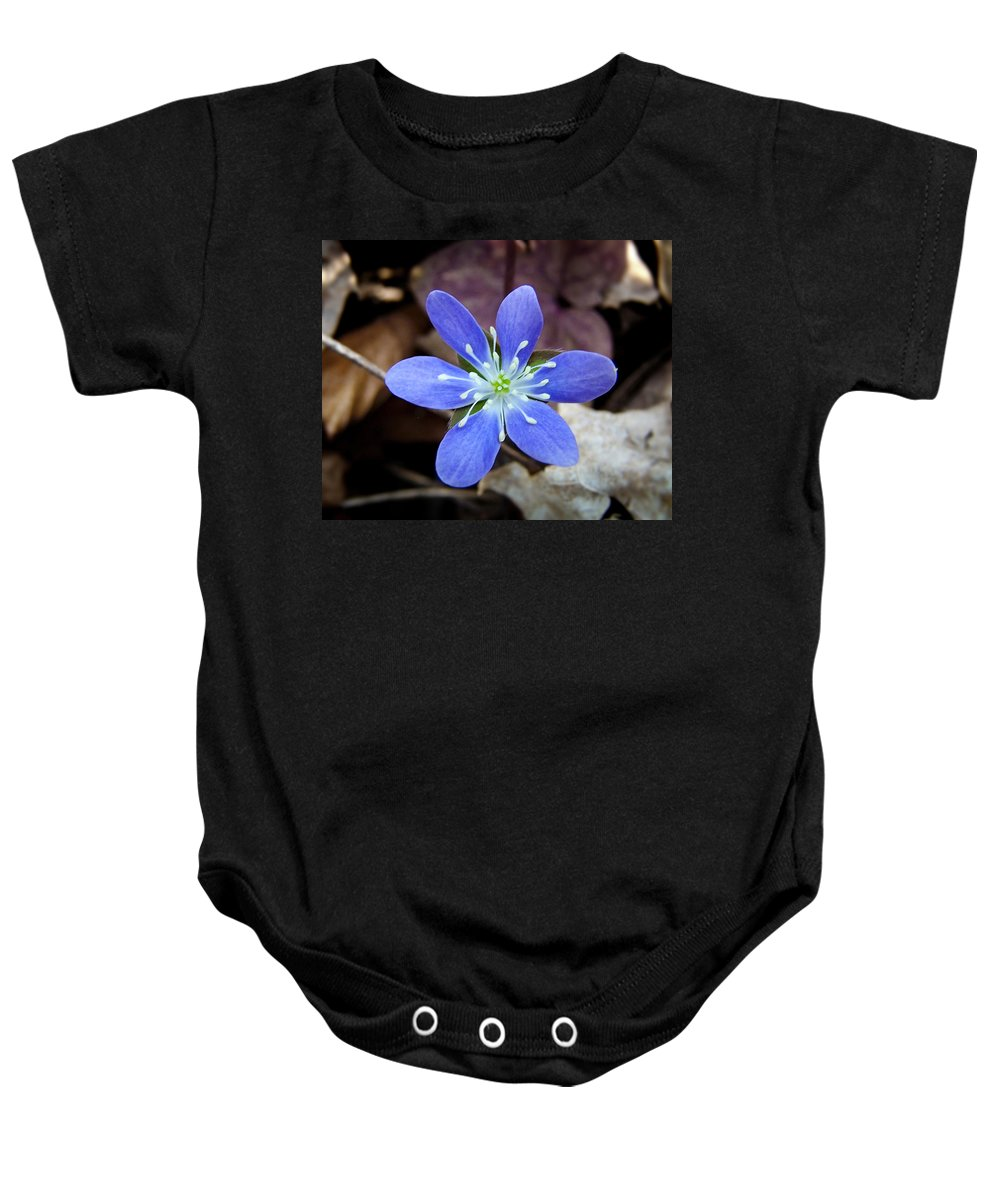 Wildflower Baby Onesie featuring the photograph Hepatica Blue by Bill Pevlor