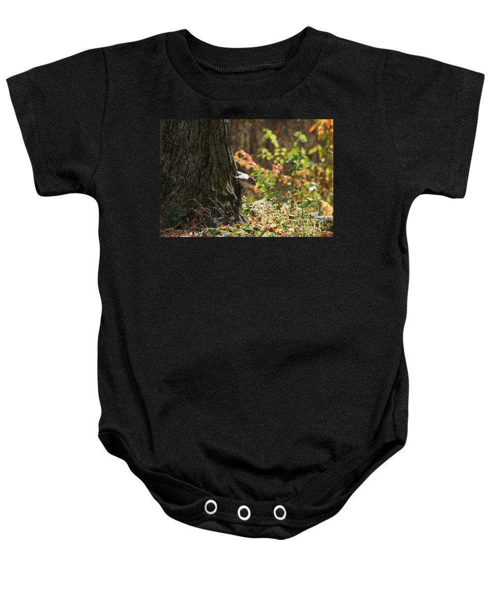 Squirrel Squirrels Baby Onesie featuring the photograph Hide And Seek by Neal Eslinger