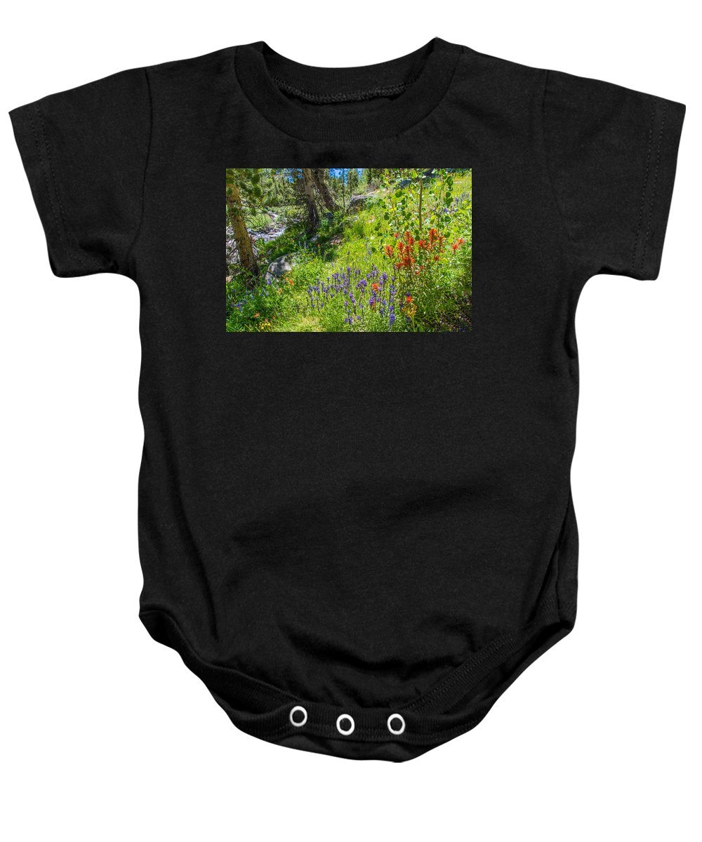 Sierra Baby Onesie featuring the photograph High Country Wildflowers by Lynn Bauer