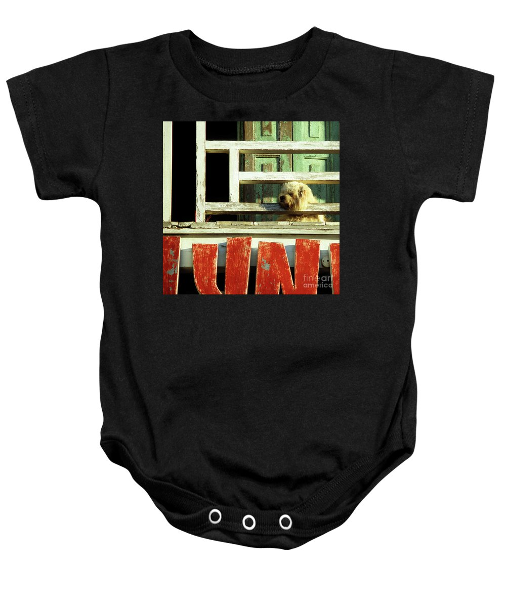 Vietnam Baby Onesie featuring the photograph Hoi An Dog 02 by Rick Piper Photography