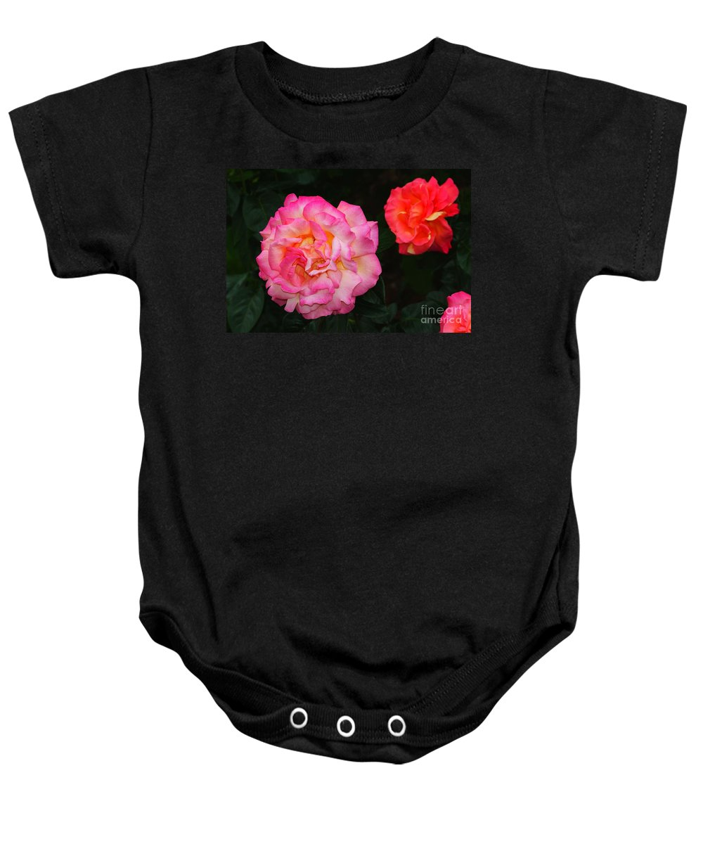 Red Baby Onesie featuring the photograph Huge Pink And White Rose...  # by Rob Luzier