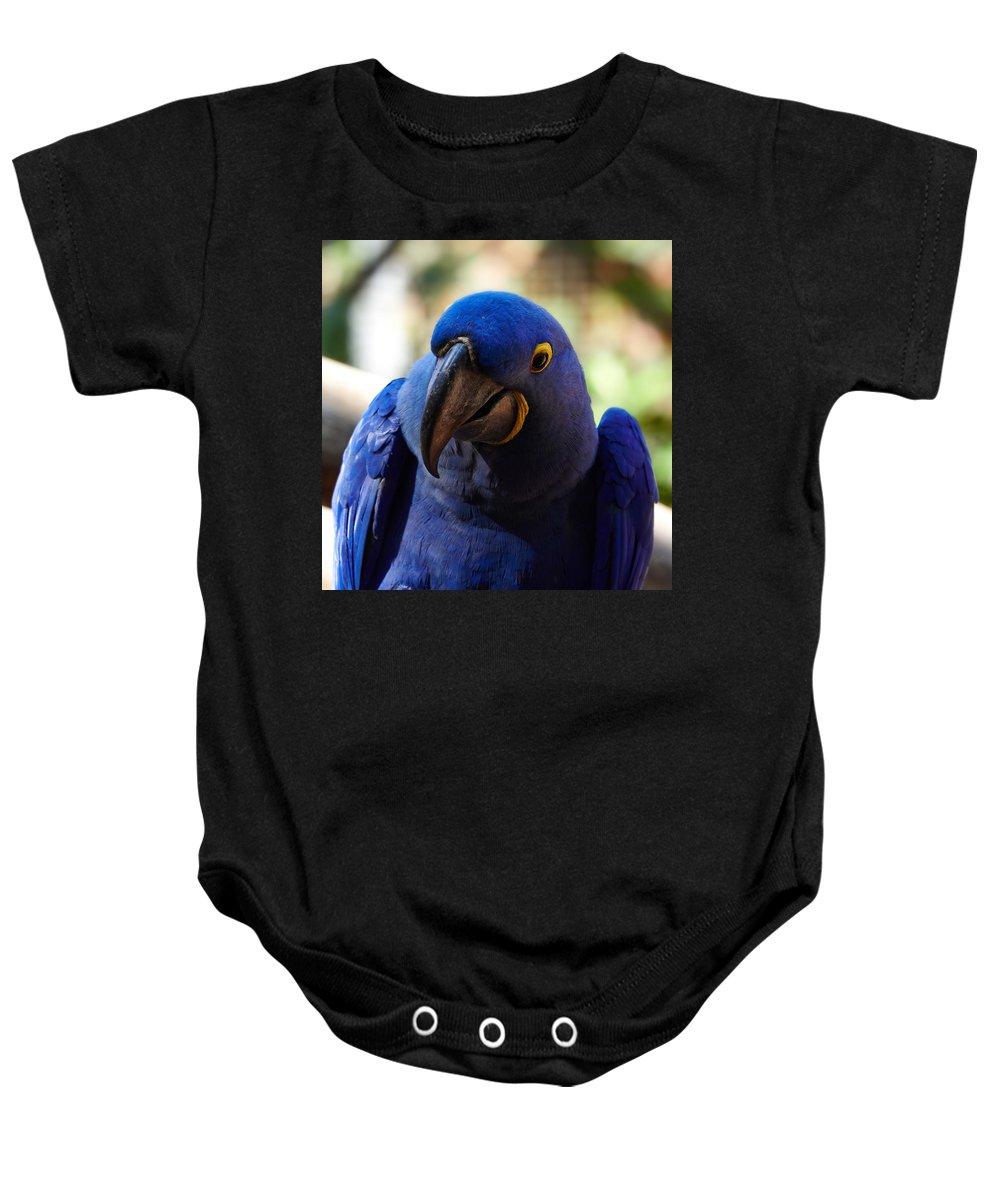 Atlantic Ocean Baby Onesie featuring the photograph Hyacinth Macaw by Jouko Lehto