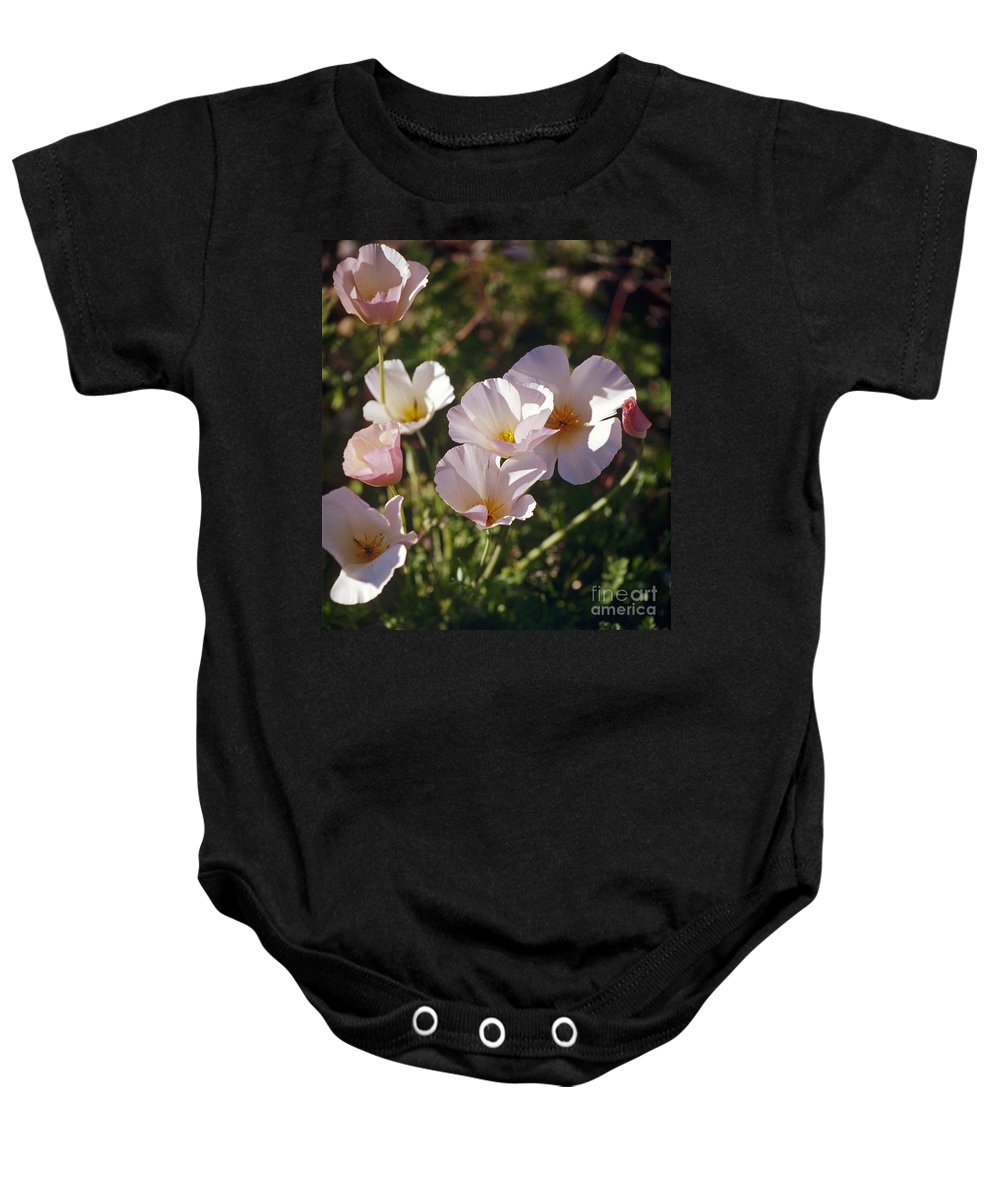 Flowers Baby Onesie featuring the photograph Icelandic Poppies by Kathy McClure