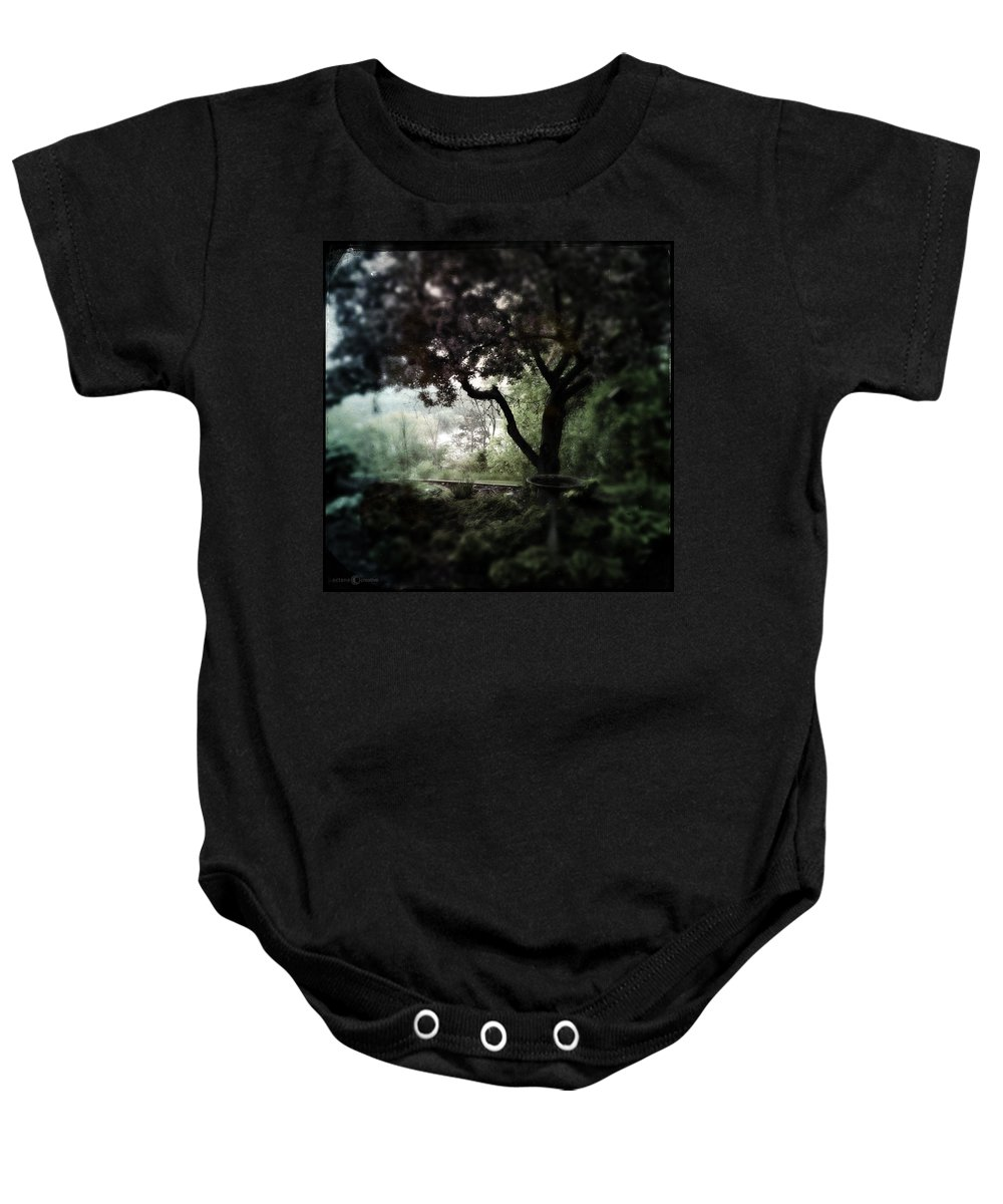 Garden Baby Onesie featuring the photograph In And Out Of The Garden by Tim Nyberg